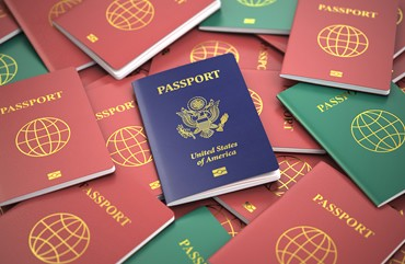 Electronic Passport components